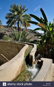 stock-photo-traditional-falaj-canal-irrigation-system-at-mountain-oasis-of-wadi-25944844